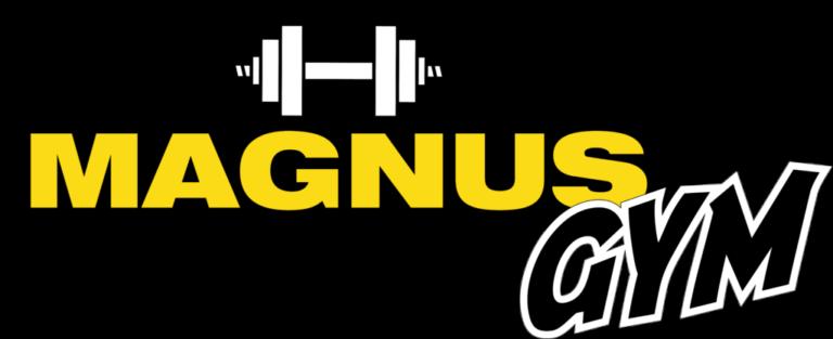 Тренажёрный зал «Magnus gym»
